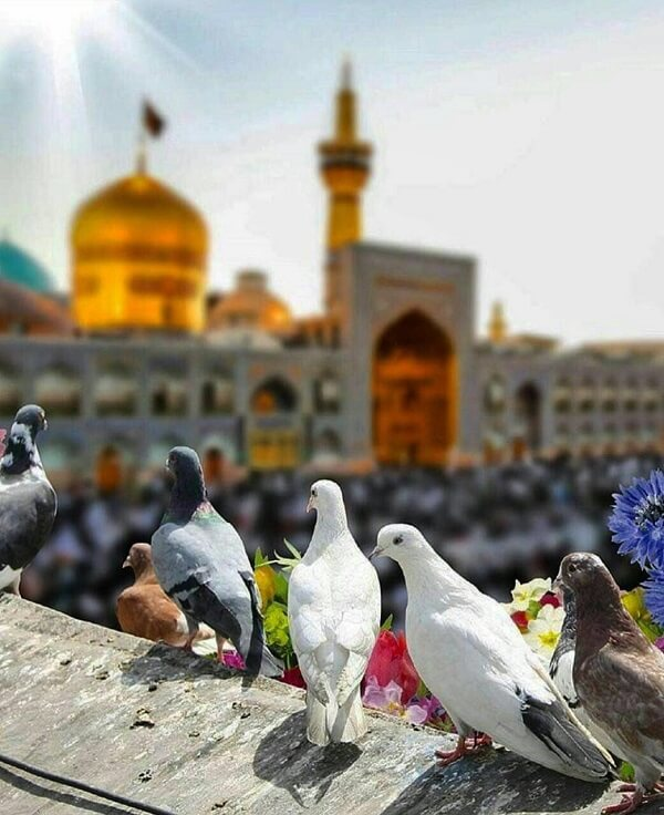 تور لحظه آخری مشهد از اصفهان